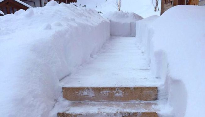 Snow Celaring